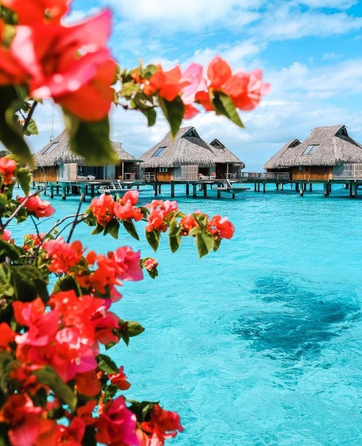 This just became our #1 honeymoon destination pick... ? travelbycasey has your hookup for The Maldives and these awesome overwater